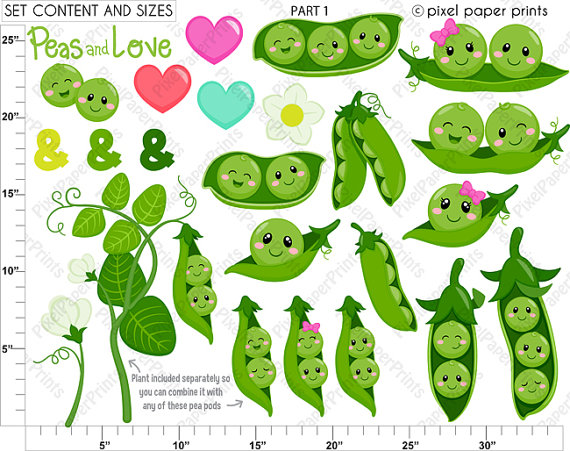 Pea clipart cute From Peas in set $5