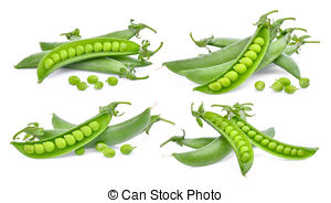 Pea clipart pile On Green on Green