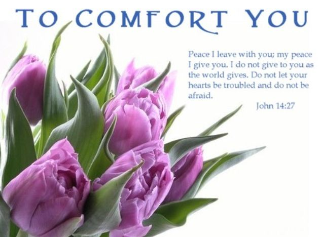 Peace clipart condolence On  and message Best