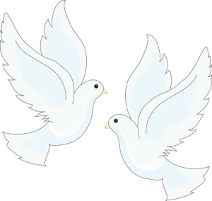 Wings clipart dove Peace Birds Wing White White