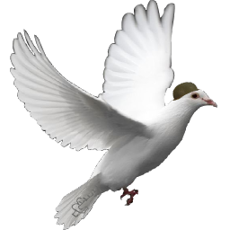 Peace clipart kabootar App (Pigeon) Kabootar Data Kabootar