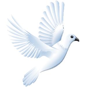 Peace clipart pigeon peace Clip Art Download Peace Peace