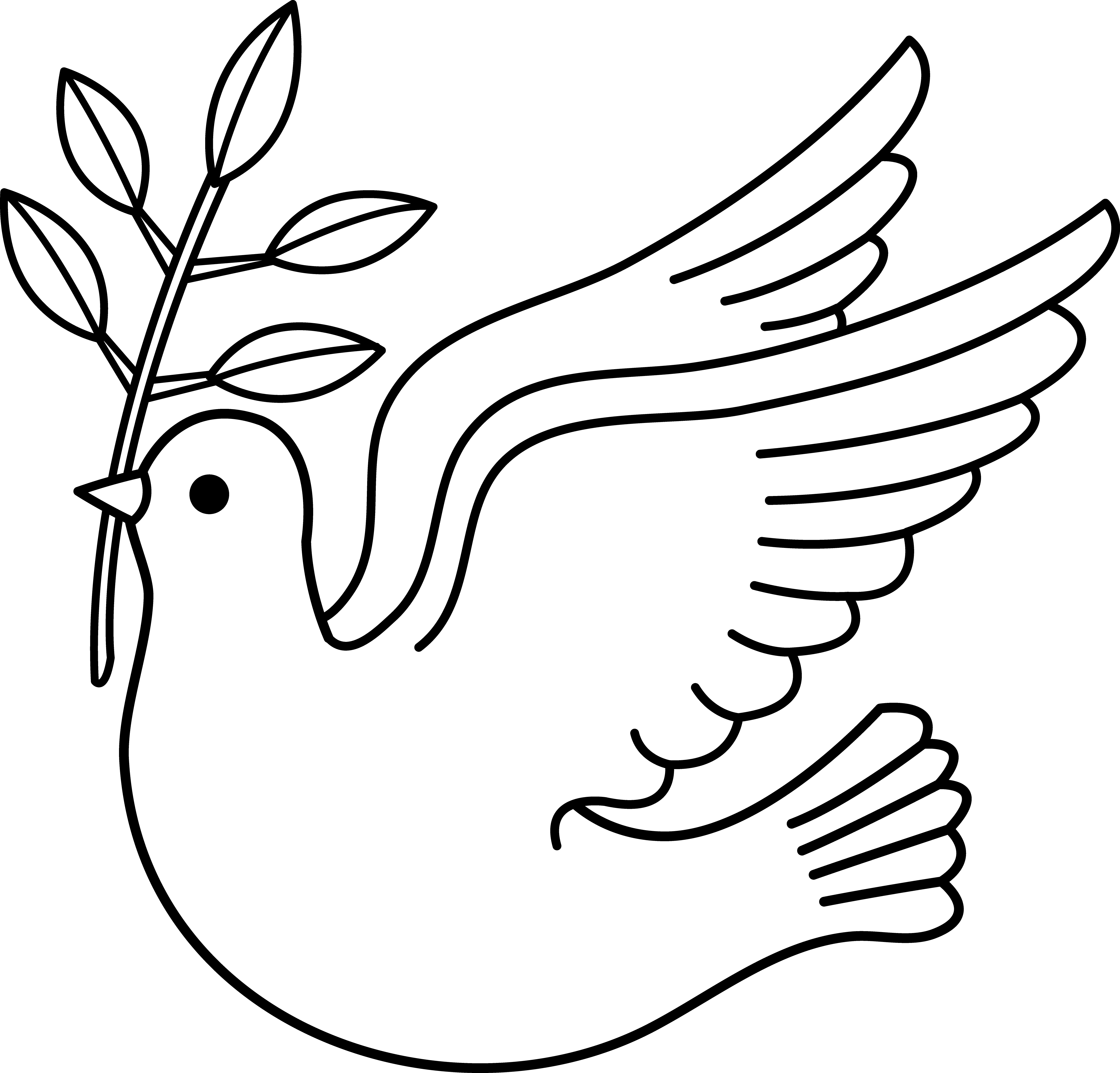 Pigeon clipart dove outline Download Free Art Art Free