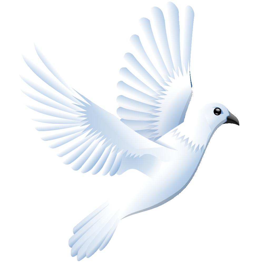 Peace Dove clipart dove bird #6