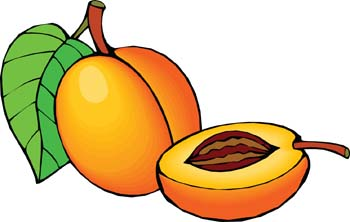 Peach clipart single fruit Peach free Free white Peach