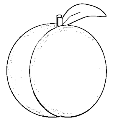 Peach clipart black and white White com Clip Related Peach