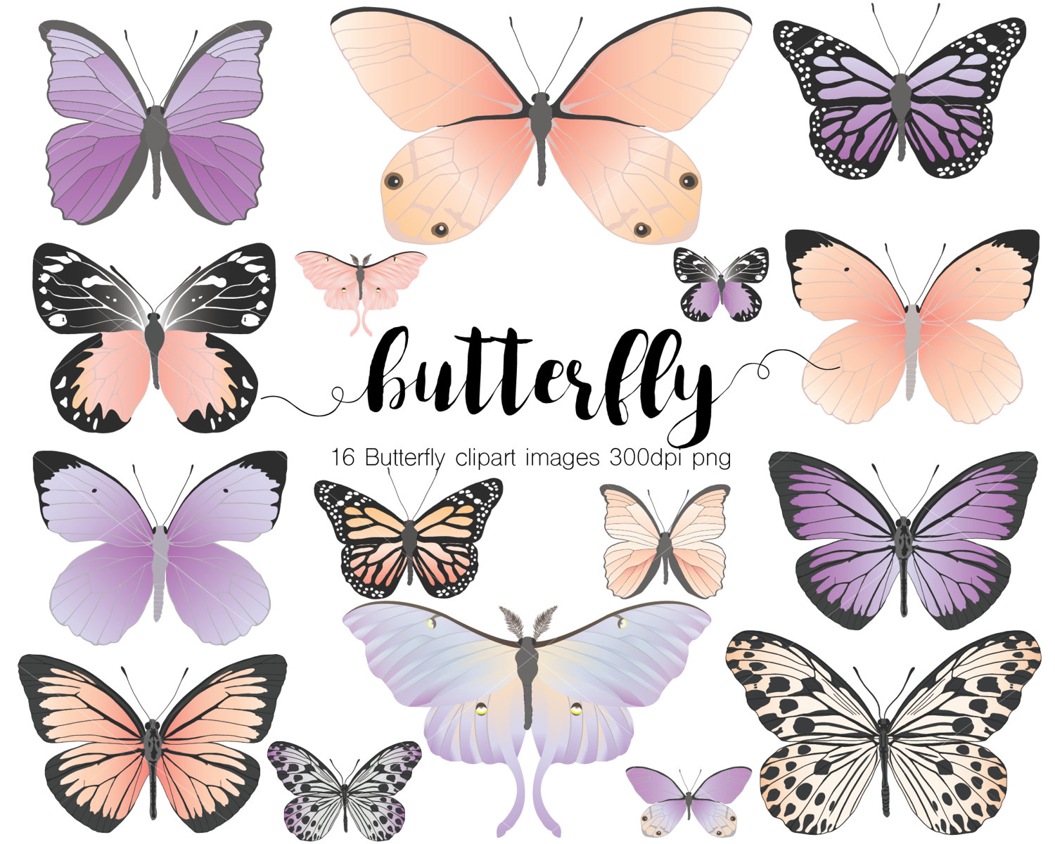 Peach clipart butterfly Dpi digital a from