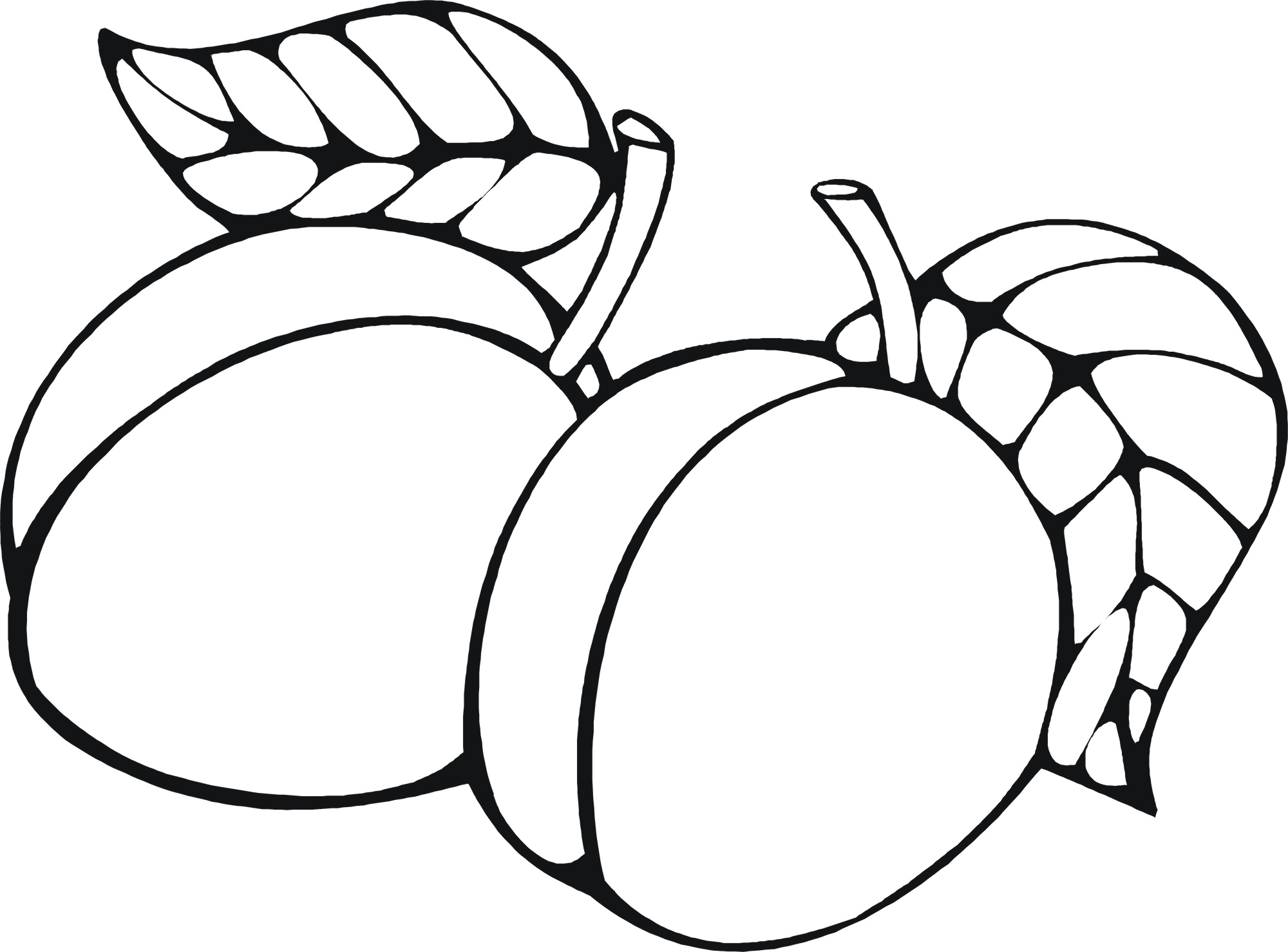 Peach clipart coloring Pages bats Pages Children's Food