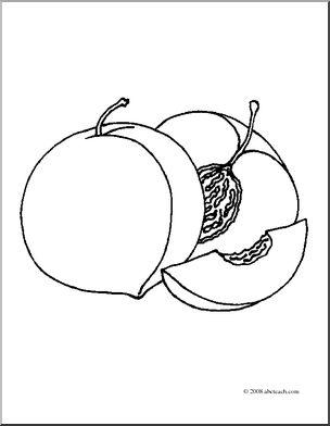 Peach clipart coloring I Realistic abcteach Fruit: Peaches