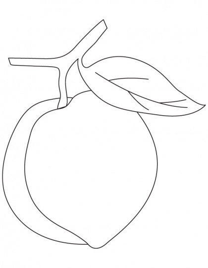 Peach clipart coloring Clip Download Art Pages Free