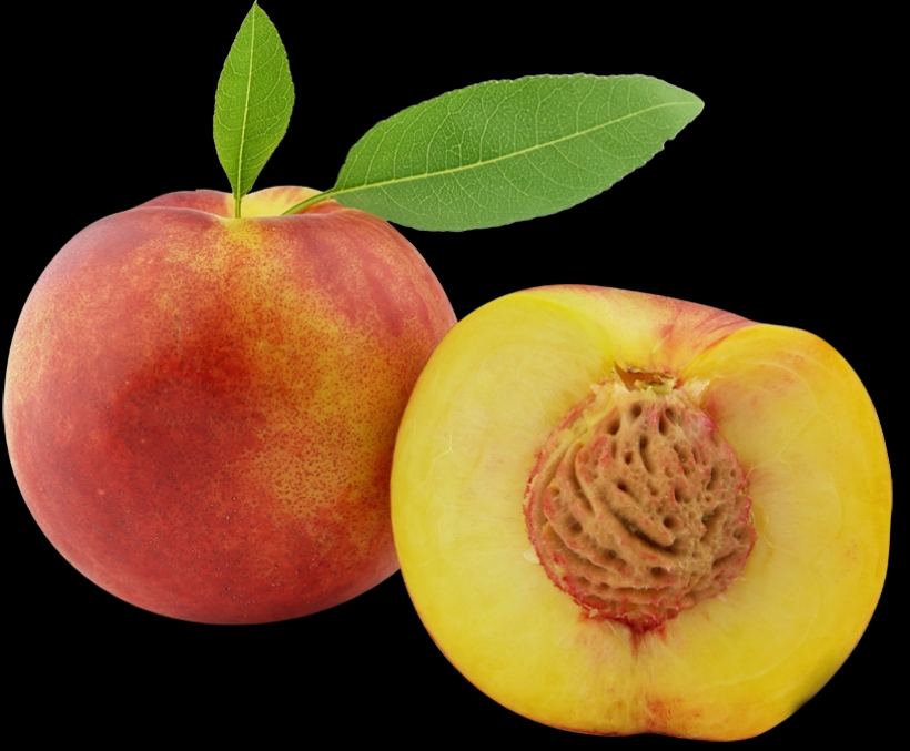 Peach clipart orange fruit Clipart clipart  art downloadclipartMost