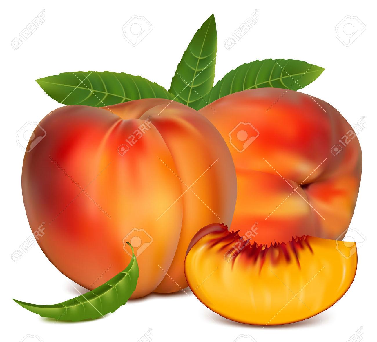 Peach clipart peach slice  Clipart Red Autumn art