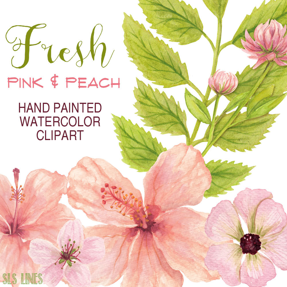Peach clipart pink Clipart pink flowers watercolor hand