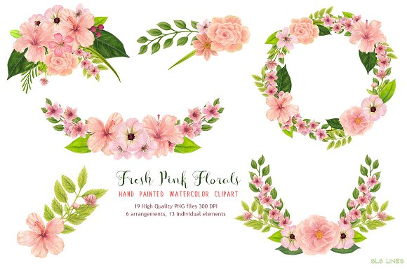 Peach clipart pink Watercolors Pink Illustrations  Market
