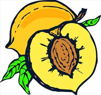 Peach clipart pit Peach Free Art Clip Images