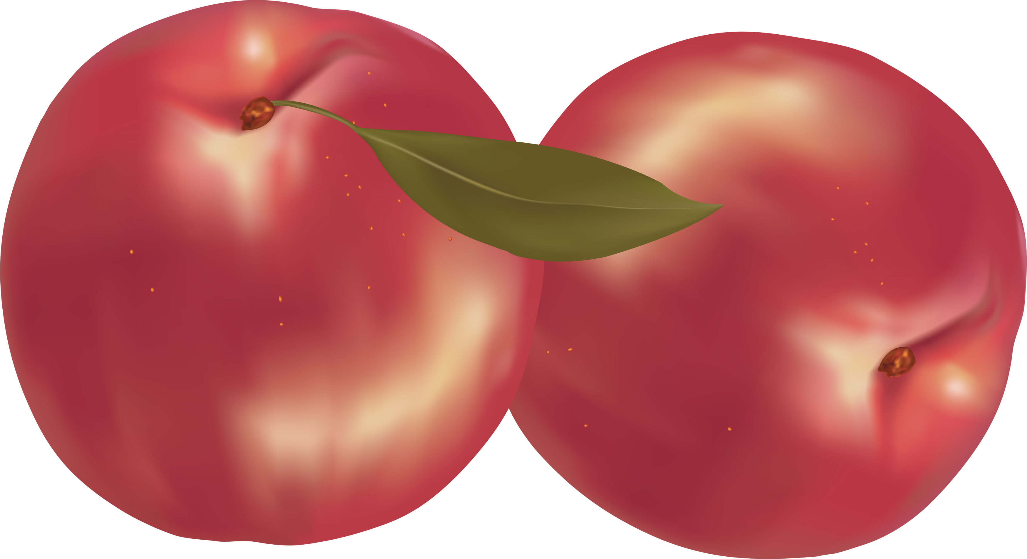 Peach clipart plum Image download peach pictures image