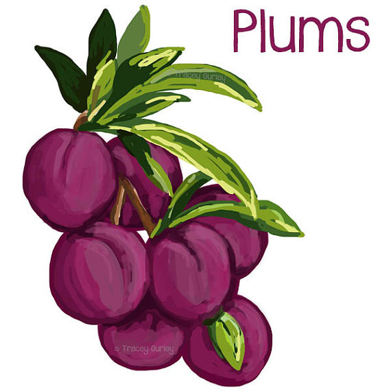 Peach clipart plum Original files 2 printable download