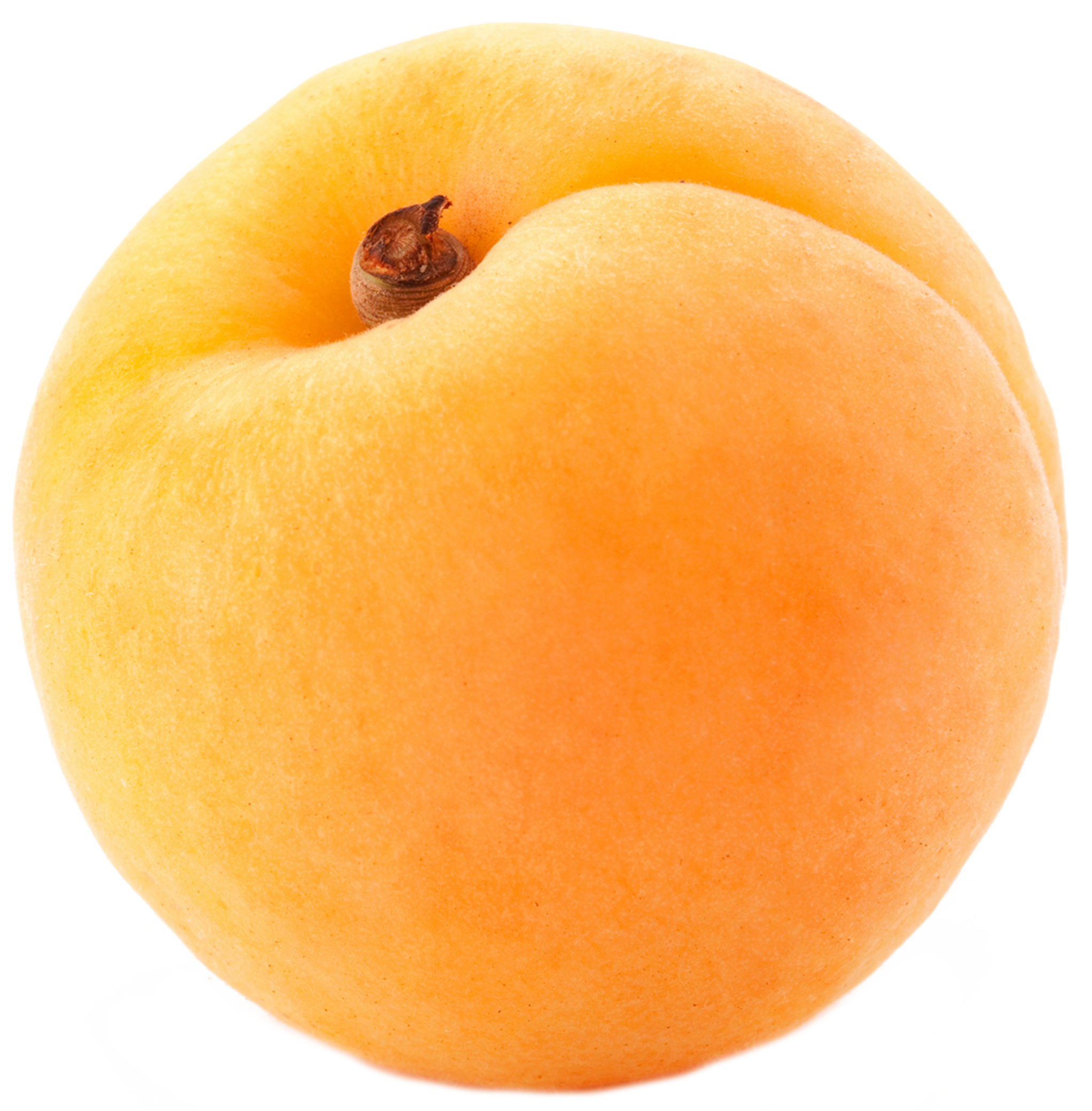 Peach clipart single fruit Apricot images free png download