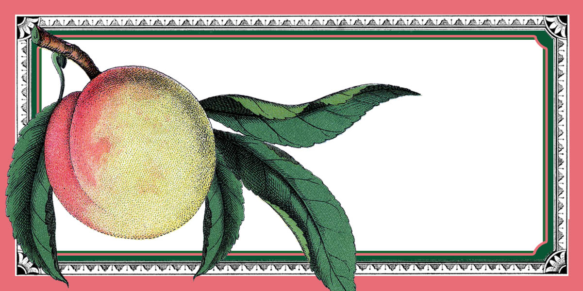 Peach clipart vintage Fairy Printable Graphics Labels Graphics