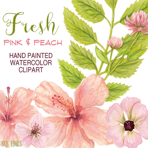 Peach clipart watercolor From on flowers and clipart