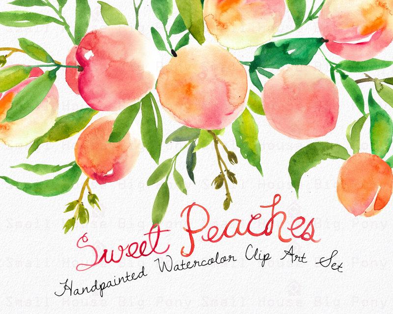 Peach Flower clipart watercolor Clipart wedding Set watercolour summer