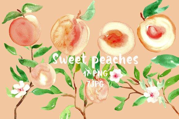 Peach clipart watercolor Art clip Creative Watercolor Graphics
