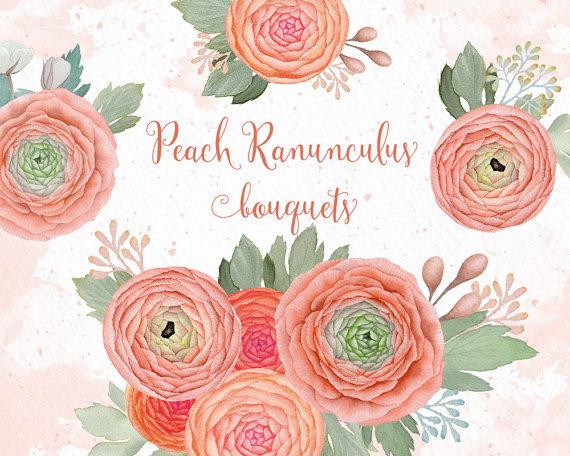 Peach Flower clipart Clipart clipart Flowers flower ranunculus