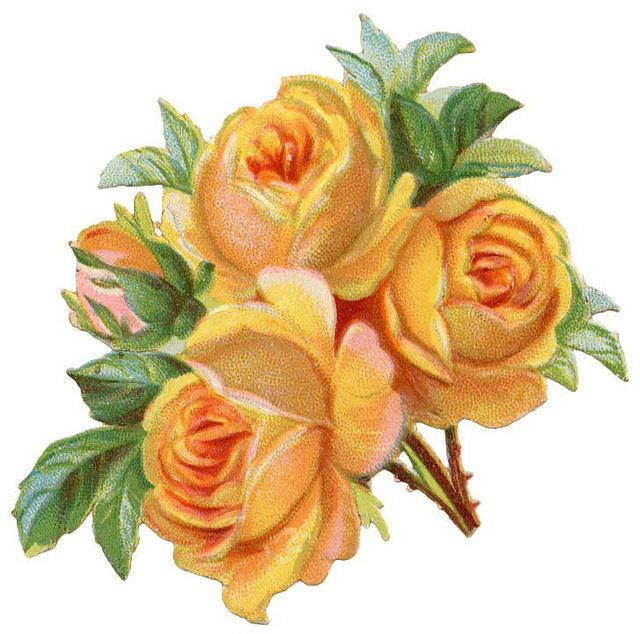 Peach Flower clipart antique flower Colored Graphics: images on 152