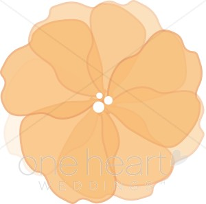 Peach Flower clipart orange