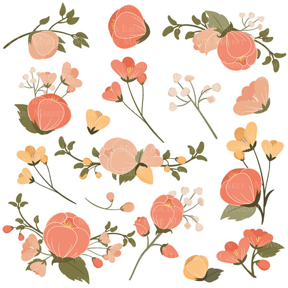 Peach Flower clipart orange Bunches file This is