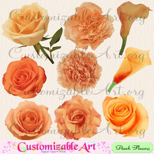 Peach Flower clipart orange Graphics Clip Peach Orange Flower