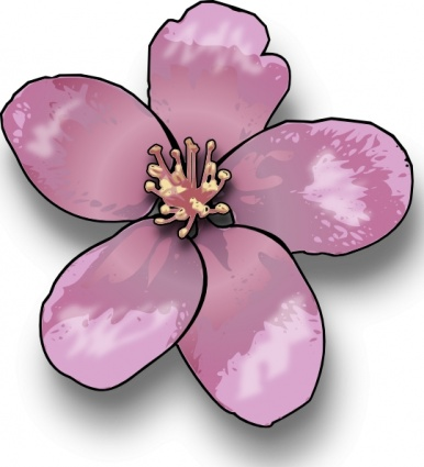 Peach Flower clipart peach blossom Fans peach clip #19 art