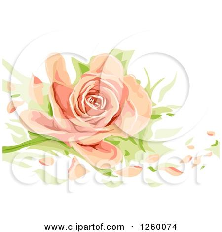 Peach Flower clipart peach color #3 Peach Peach clipart Peach