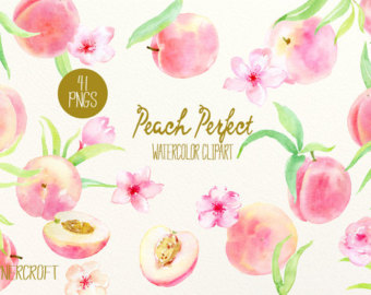 Peach Flower clipart peach color Perfect patterns Watercolor instant flowers
