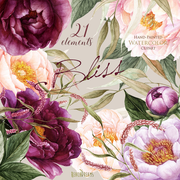 Peach Flower clipart peony Peonies  This file Floral