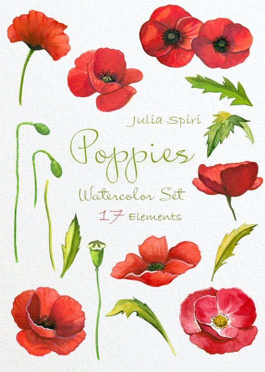 Red Flower clipart poppy flower #4