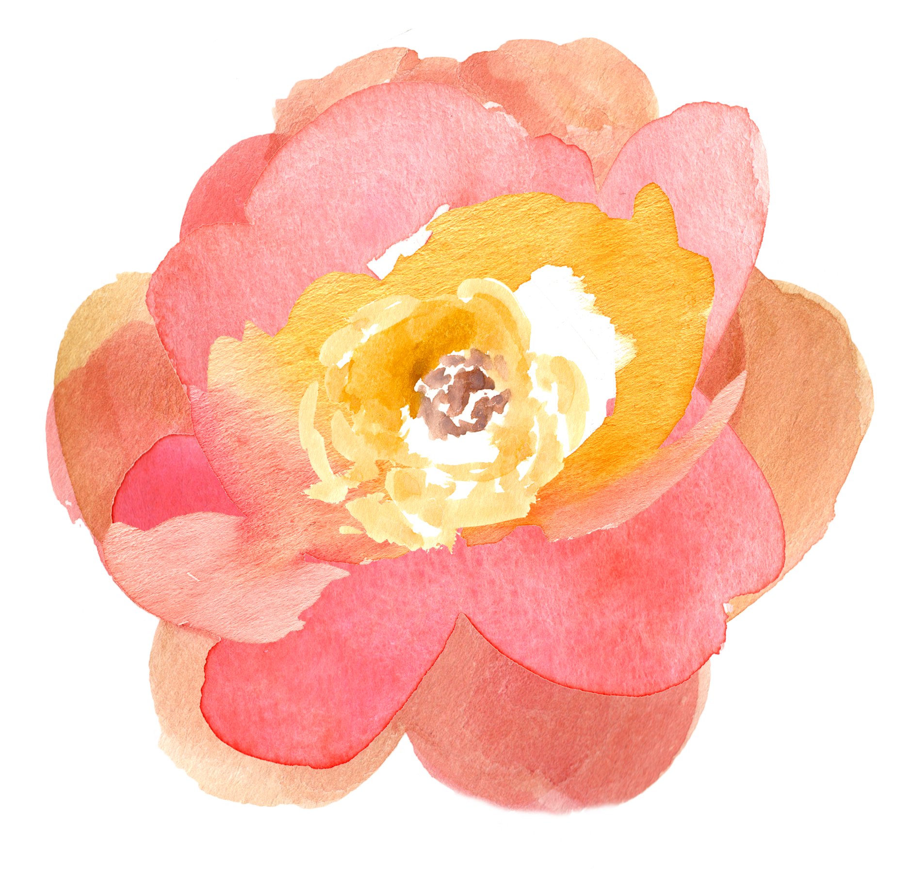 Peach Flower clipart transparent Floral Fall Pretty! Free Watercolor
