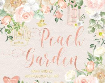 Peach Flower clipart watercolor Vector Rose flower PinkPeach Peach