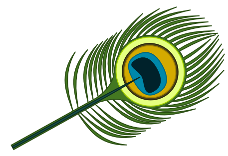 Peacock clipart animated Peacock Images Animated images photo#7