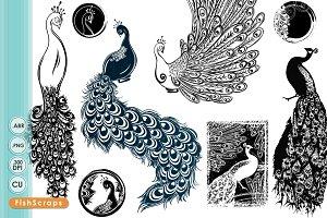 Peacock clipart art brush Brushes Digital Fonts Peacock Graphics