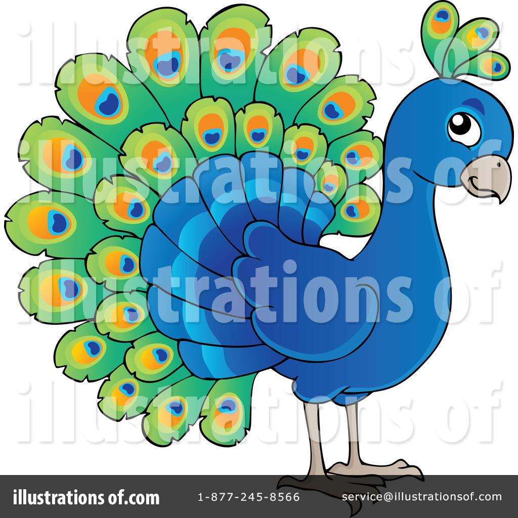 Peacock clipart beak Peacock Clipart Illustration Clipart Free