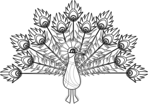 Peacock clipart big Art vector com online Lineart