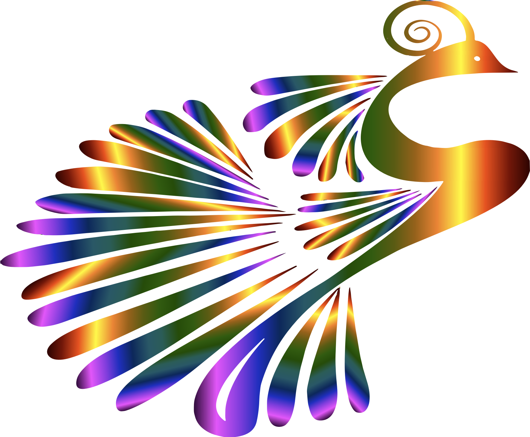 Peacock clipart big Peacock BIG Colorful Clipart IMAGE