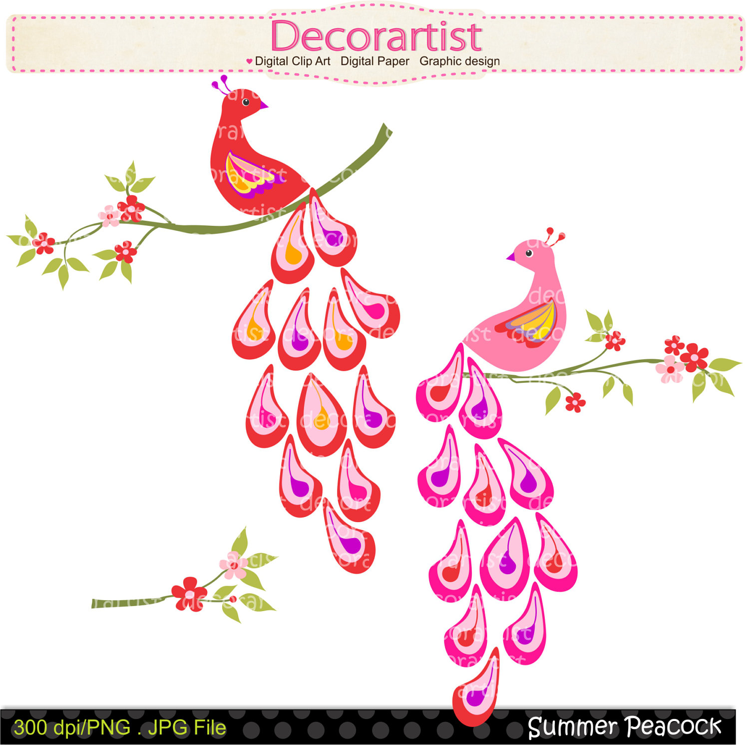 Peacock clipart bird flower Drawings art and pattern