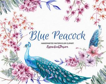 Peacock clipart bird flower Wedding Blue clipart Clip Peacock