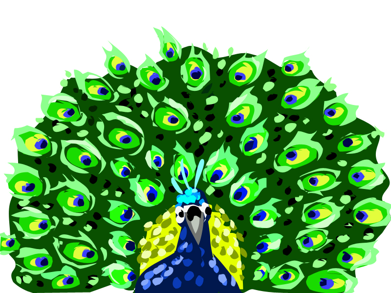 Peacock clipart front view Peacock sheher sheher by dragin