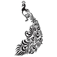Drawn peacock filigree Peacocks Google Google  Pinterest