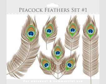 Peacock clipart graphic design Clipart digital Etsy art Clip
