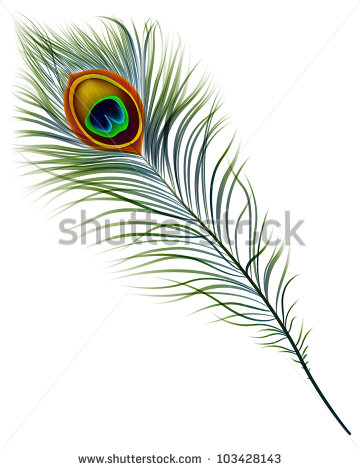 Drawn peacock peacock tail Isolated 10  peacock EPS