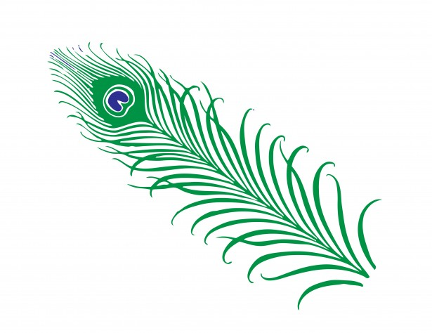 Peacock clipart small Free svg open Peacock collections